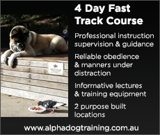 Read more about our 4 Day Fast Track Course