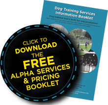 Download our FREE information booklet on all of Alpha's services